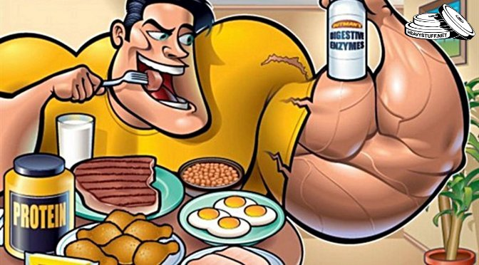 bodybuilder-high-protein-meal