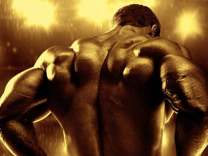 movie-bodybuilding